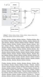 chicken essay